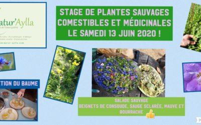 13 JUIN 2020: STAGE DE PLANTES SAUVAGES COMESTIBLES ET MÉDICINALES