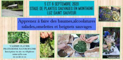 5 et 6 septembre 2020 : STAGE DE PLANTES MÉDICINALES ET COMESTIBLES EN MONTAGNE ( LUZ-SAINT-SAUVEUR)